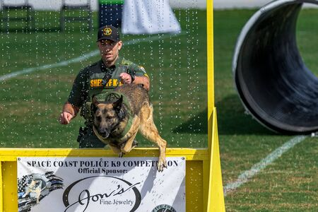 Cocoa, Florida / USA - October 12, 2019: A Florida Sheriff's K9 team leaps over a barrier and through a water obstacle during the Space Coast Police K9 Competition Archivio Fotografico - 132890776
