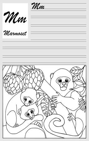 Marmoset, english alphabet, coloring outline, write and paint. Set of cards, illustration and text.