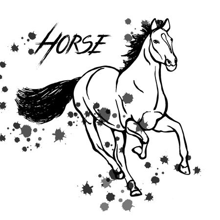 Hand drawn sketch style horse in black and white illustration isolated on white background. Illustration