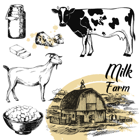 Set of hand drawn sketch style milk farm related objects. Vector illustration isolated on white background. Imagens - 91720024