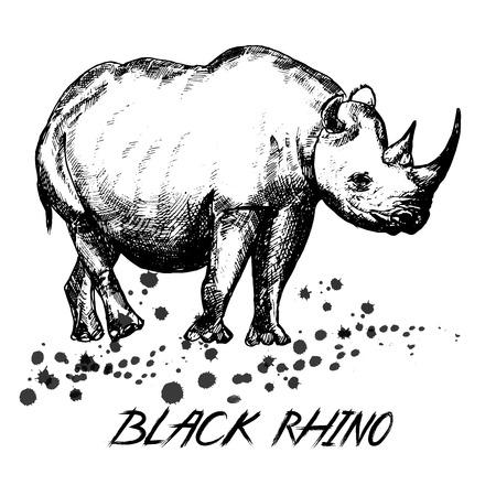 손으로 그린 스케치 스타일 코뿔소 흰색 배경에 고립. 일러스트