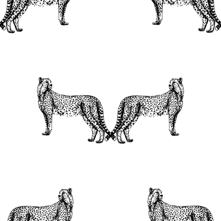 Seamless pattern of hand drawn sketch style cheetah. Vector illustration.