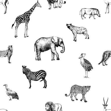 Seamless pattern of hand drawn sketch style African animals and birds isolated on white background.