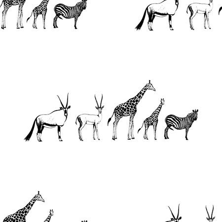 Seamless pattern of hand drawn sketch style oryx, gazelle, giraffe and zebra isolated on white background.  イラスト・ベクター素材