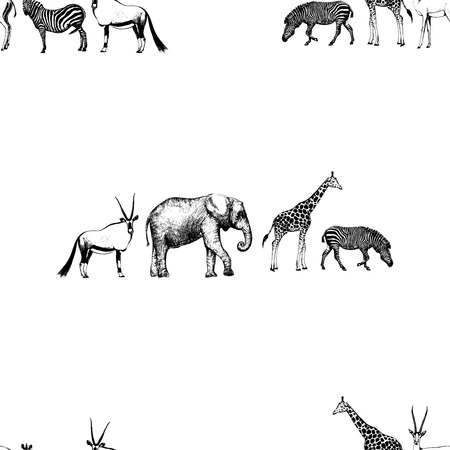 Seamless pattern of hand drawn sketch style oryx, elephant, giraffe and zebra isolated on white background.