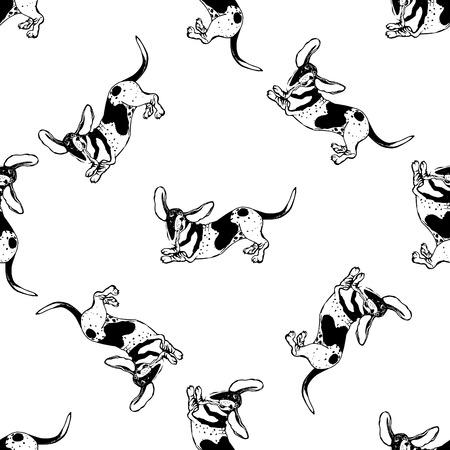 Patrón sin fisuras del estilo de dibujo dibujado a mano Basset Hounds aislados sobre fondo blanco. Ilustración de vector