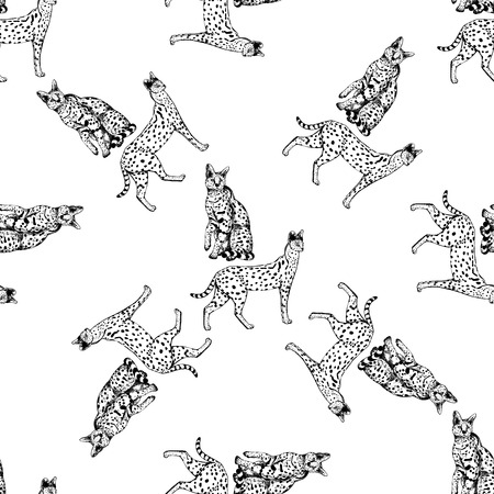 Seamless pattern of hand drawn sketch style servals. Vector illustration isolated on white background.