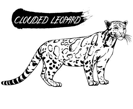 Hand gezeichnete Skizze Stil bewölkt Grafik . Vektor-Illustration isoliert auf weißem Hintergrund Standard-Bild - 93794584