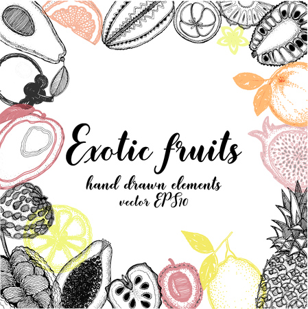 Hand drawn sketch style fruits. Vector illustration. Çizim