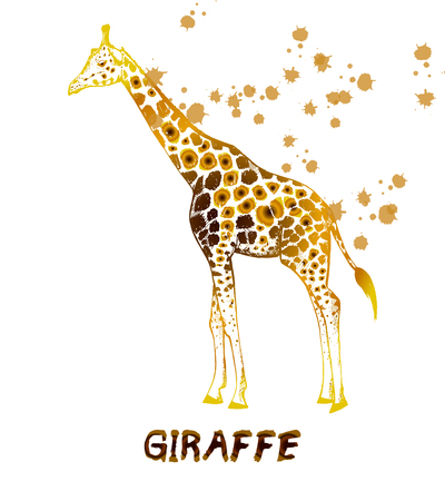 Hand drawn sketch of giraffe. Vector illustration isolated on white background. Imagens - 93788880