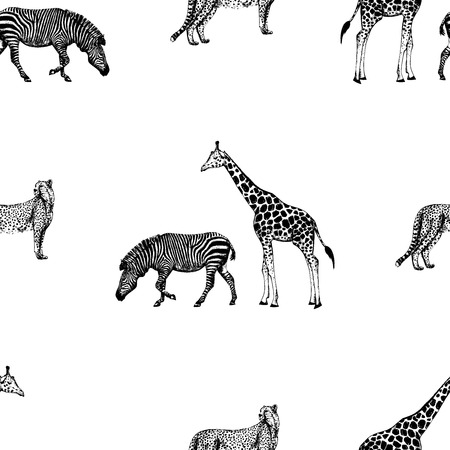 Seamless pattern of hand drawn sketch style giraffe, zebra and cheetah. Vector illustration isolated on white background.