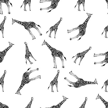 Seamless pattern of hand drawn sketch style giraffes. Vector illustration isolated on white background. Ilustração