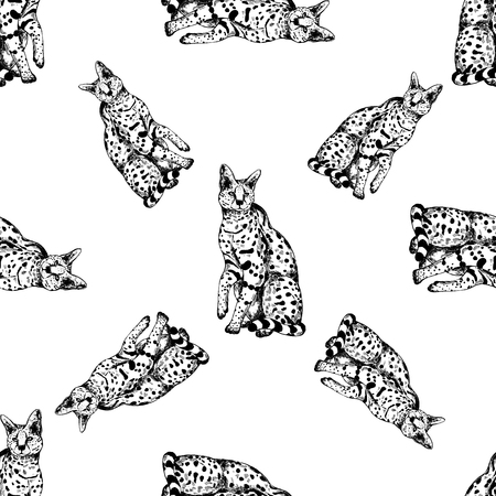 Seamless pattern of hand drawn sketch style serval. Vector illustration isolated on white background. Ilustração