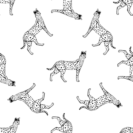 Seamless pattern of hand drawn sketch style serval. Vector illustration isolated on white background. Stock Vector - 93786905