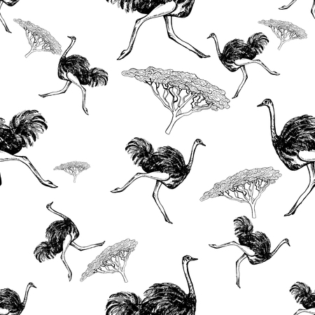 Seamless pattern of hand drawn sketch style ostriches and trees. Vector illustration isolated on white background.