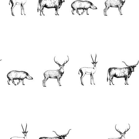 Nahtloses Muster von Hand gezeichneten Skizzenarttieren. Vektorabbildung getrennt auf weißem Hintergrund.