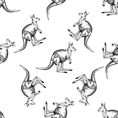 Seamless pattern of hand drawn sketch style kangaroo. Vector illustration isolated on white background. Ilustração