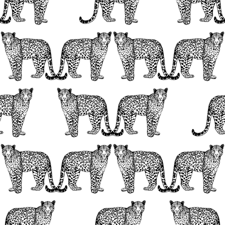 Seamless pattern of hand drawn sketch style leopards isolated on white background. Vector illustration.