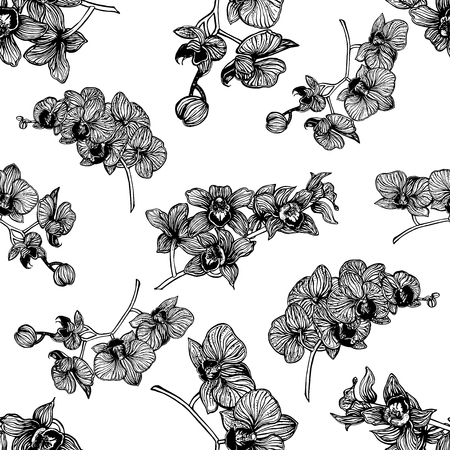 Seamless pattern of hand drawn sketch style orchid flowers isolated on white background. Vector illustration. Stock Illustratie