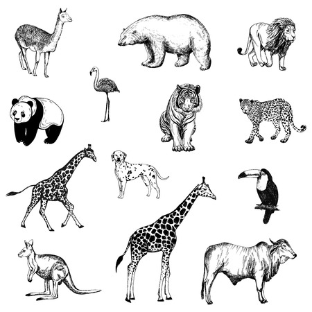 Set of hand drawn sketch style animals and birds isolated on white background Vector illustration. Vectores