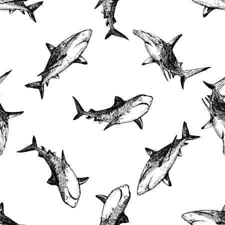 Seamless pattern of hand drawn sketch style sharks isolated on white background. Vector illustration. Illusztráció
