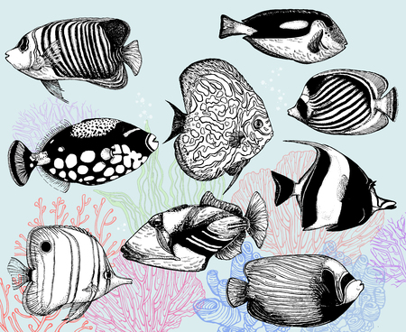 Set of hand drawn sketch style tropical fish and corals. Isolated vector illustration. 向量圖像