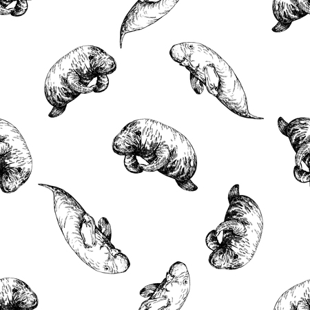 Seamless pattern of hand drawn sketch style manatees isolated on white background. Vector illustration.