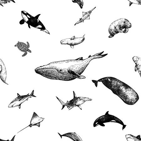 Seamless pattern of hand drawn sketch style marine animals isolated on white background. Vector illustration. Vettoriali