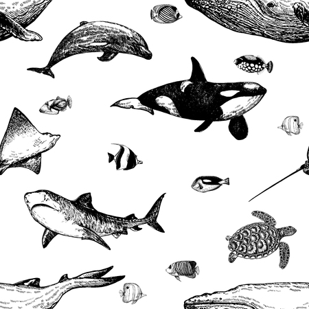 Seamless pattern of hand drawn sketch style marine animals and tropical fish isolated on white background. Vector illustration. Ilustração