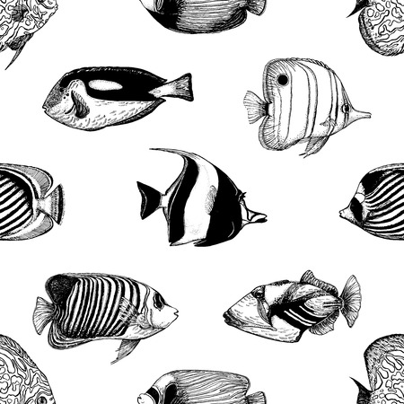 Seamless pattern of hand drawn sketch style tropical fish isolated on white background. Vector illustration.