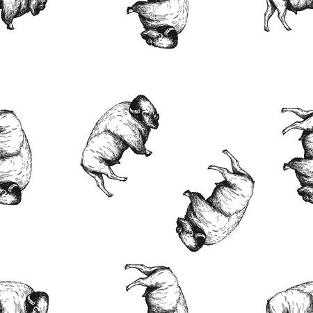 Modello senza cuciture di bisonte di stile di schizzo disegnato a mano isolato su priorità bassa bianca. Illustrazione vettoriale.