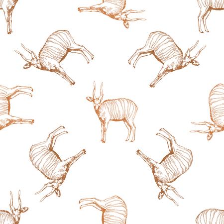 Modèle sans couture d'antilopes bongo style croquis dessinés à la main isolés sur fond blanc. Illustration vectorielle.