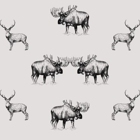 Seamless pattern of hand drawn sketch style moose and deer isolated on white background. Vector illustration. Illustration
