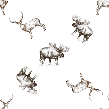 Seamless pattern of hand drawn sketch style moose and deer isolated on white background. Vector illustration. Ilustração
