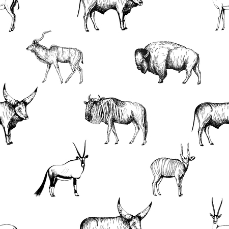 Seamless pattern of hand drawn sketch style ungulates isolated on white background. Vector illustration. Illustration