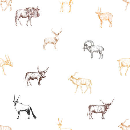 Seamless pattern of hand drawn sketch style ungulates isolated on white background. Vector illustration. 写真素材 - 110269017