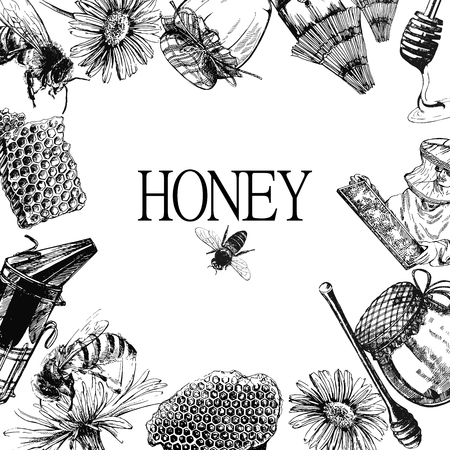 Composition of hand drawn sketch style beekeeping themed objects. Vector illustration.