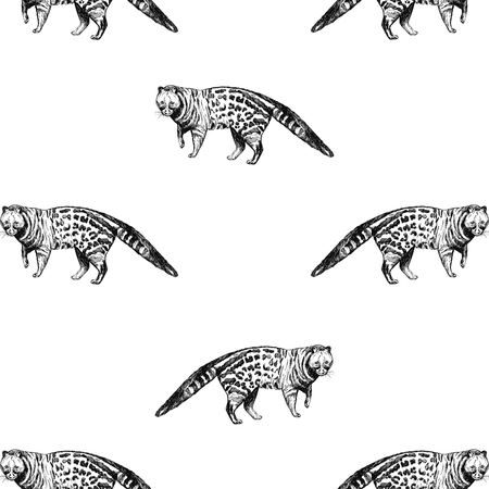Seamless pattern of hand drawn sketch style genet isolated on white background. Vector illustration. Çizim