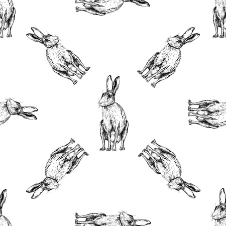 Seamless pattern of hand drawn sketch style jackrabbits isolated on white background. Vector illustration.
