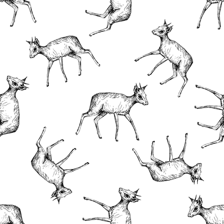 Seamless pattern of hand drawn sketch style dik-diks isolated on white background. Vector illustration. Иллюстрация