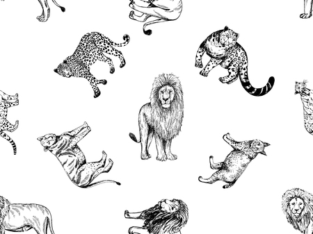 Seamless pattern of hand drawn sketch style big cats isolated on white background. Vector illustration.