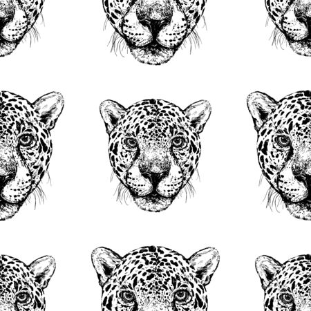 Seamless pattern of hand drawn sketch style portraits of leopard isolated on white background. Vector illustration.