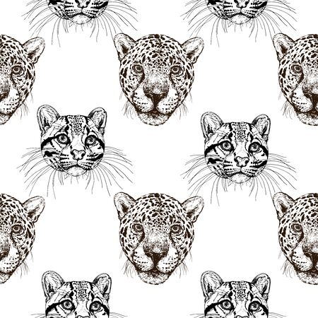 Seamless pattern of hand drawn sketch style portraits of clouded leopards with common leopards isolated on white background. Vector illustration.