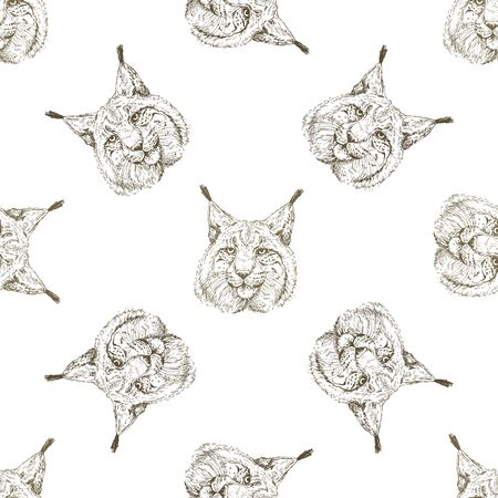 Seamless pattern of hand drawn sketch style portraits of lynx isolated on white background. Vector illustration.