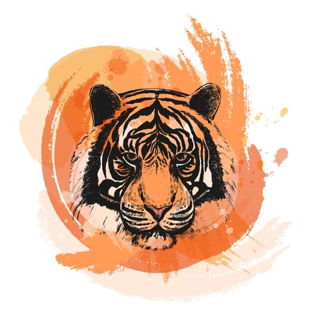 Hand drawn sketch style portrait of tiger. Vector illustration isolated on white background. Иллюстрация