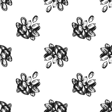 Seamless pattern of hand drawn sketch style pine nuts isolated on white background. Vector illustration.
