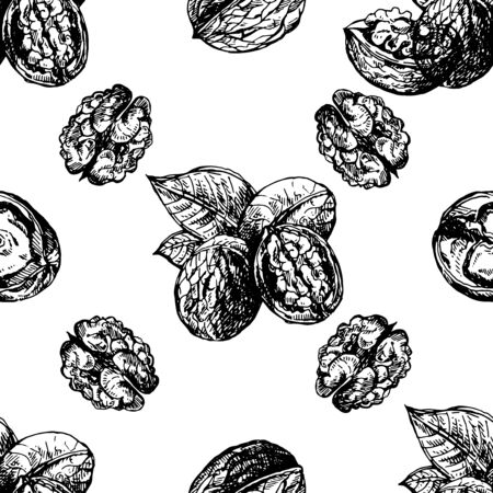 Seamless pattern of hand drawn sketch style walnuts isolated on white background. Vector illustration. Vetores