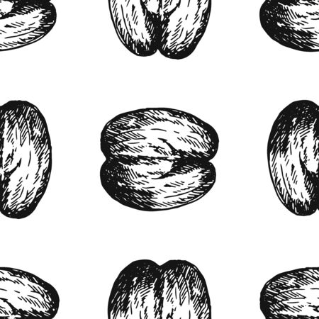 Seamless pattern of hand drawn sketch style sea coconuts isolated on white background. Vector illustration. Illustration