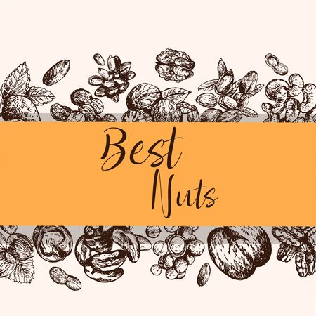Poster card composition of hand drawn sketch style different kinds of nuts. Isolated vector illustration.