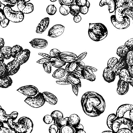 Seamless pattern of hand drawn sketch style different kinds of nuts isolated on white background. Vector illustration. Ilustrace